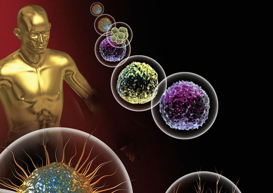 bacoban bactery